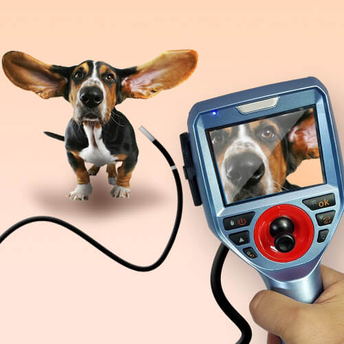 What Should I Look At While Choosing A Borescope