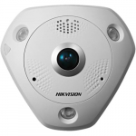 12MP Outdoor Fisheye Network Camera